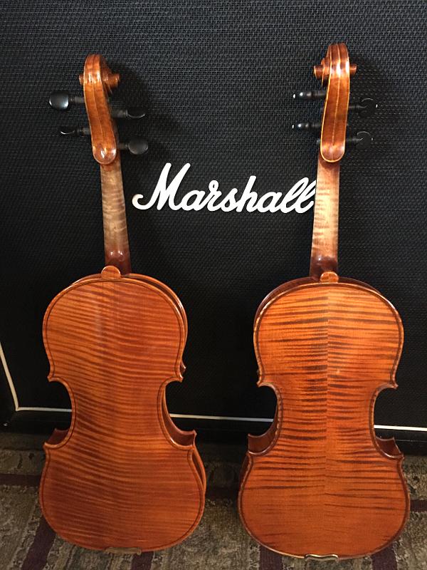 violinback-2.jpg